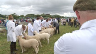 Last year's North Devon Show was attended by thousands of people.