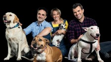The Supervet is coming to Newcastle to try and find homes for as many rescue animals as possible