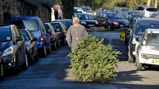 Christmas tree recycling in Bedford