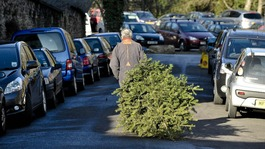 A man takes his tree for recycling