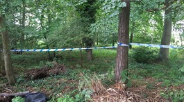 Elderly man found stabbed to death in woodland