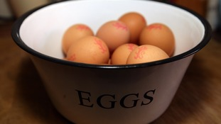 The British Egg Industry Council urged consumers to buy 'safe British eggs' carrying the British Lion mark.