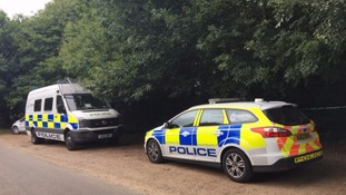 Pensioner stabbed to death while walking his dogs