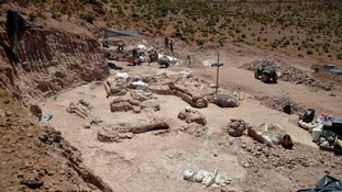 The giant dinosaur bones were found in this quarry in Chubut Province, Argentina
