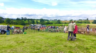 Appleby Show is taking place at Barley Field near Appleby Golf Club