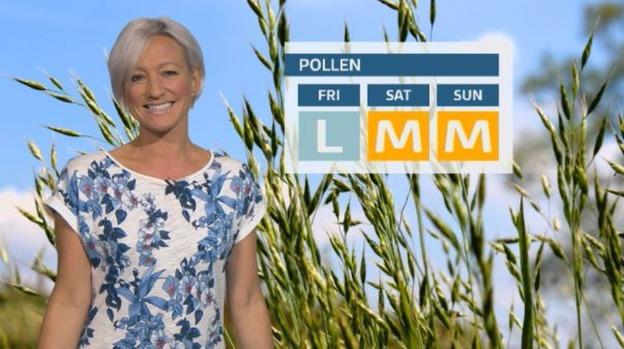 pollen.1
