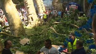 Falling tree kills 13 and injures 49 at Madeira festival