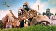 The new CBBC programme called 'The Zoo' was filmed at Paignton zoo.