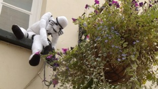 Taunton 'yarn bombed' with Star Wars characters