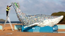 A 10m Plastic Whale is made of single-use plastics recovered from UK oceans and plastic streams.