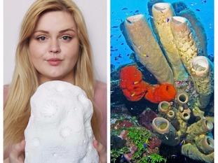 Jessica Gregory/Sea Coral