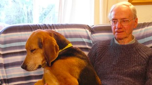 Peter Wrighton was killed while out walking his two dogs.
