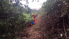 Casualty falls 40ft down a cliff and spends night in undergrowth