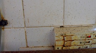 The breaches included out of date and unfit mouldy food, poor cleanliness and lack of a food safety management system.