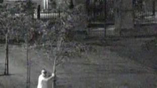 Man captured on CCTV pulling down trees at school planted in memory of former pupils