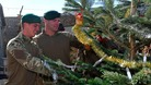 Soldiers and Christmas tree