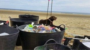 Over 350kg of rubbish found on Cambois beach, Blyth