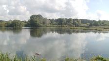 Lackford Lakes Nature Reserve near Bury St Edmunds.