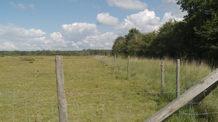 Suffolk Wildlife Trust wants to extend the reserve by 77 acres.
