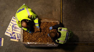 Customs Officers examine the huge haul of illegal tobacco and cigarette-making materials seized from a container at Custom House