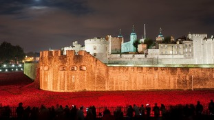 Global search launched to trace poppies from Tower of London installation
