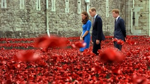 The Duke and Duchess of Cambridge and Prince Harry tour the poppies.