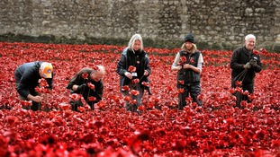 Volunteers gather up poppies after the installation's end.