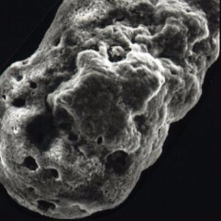The holes in this cosmic dust particle shows where the water has bubbled to the surface and vaporised.