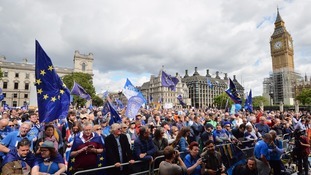 Pro-EU protesters.