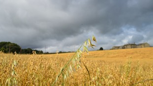 Sunny spells.  Heavy showers.  Strong winds. SANDIE NICHOLSON, Honley