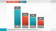 PollSeptt2017What kind of Brexit