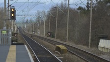 A tree on power line has brought train services between Witham and Braintree in Essex to a halt.