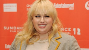 Rebel Wilson said the lies printed about her caused harm to her career.