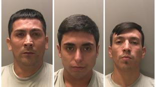 'Professional' burglars jailed for 21 years