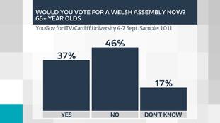 Assembly vote 65+