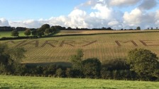 Man ploughs proposal into field to surprise girlfriend
