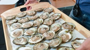 Oysters harvested from Loch Ryan