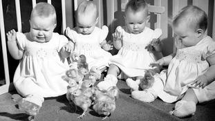 The Bristol quads in 1949