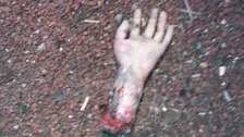 Fake severed hand