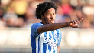 Premier League team news: Brighton vs Newcastle United - Shelvey pushing to start, Izzy Brown back for Brighton