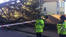 100ft tree crashes into house and crushes cars