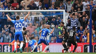 Brighton claim back-to-back home wins after Hemed strike helps them to victory over Newcastle