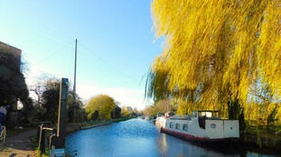 Autumn colours along the canal in Hertford on 13 September 2017.