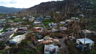 Damaged homes and trees in the Yabucoa area of Puerto Rico.
