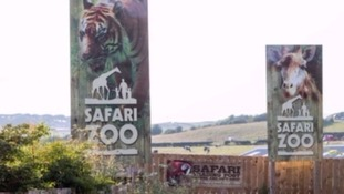 More welfare claims at troubled Cumbrian zoo