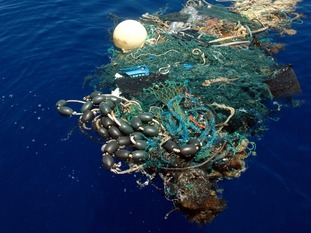 The amount of floating plastic debris expands by millions of tonnes every year.