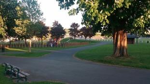 Carmarthen Park