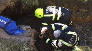 Firefighters from a technical rescue unit laboured to dig a hole around the frightened beast.