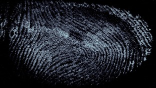 New technology can detect a suspect's hair gel from just their fingerprint