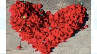Thousands of knitted poppies made for Remembrance Day